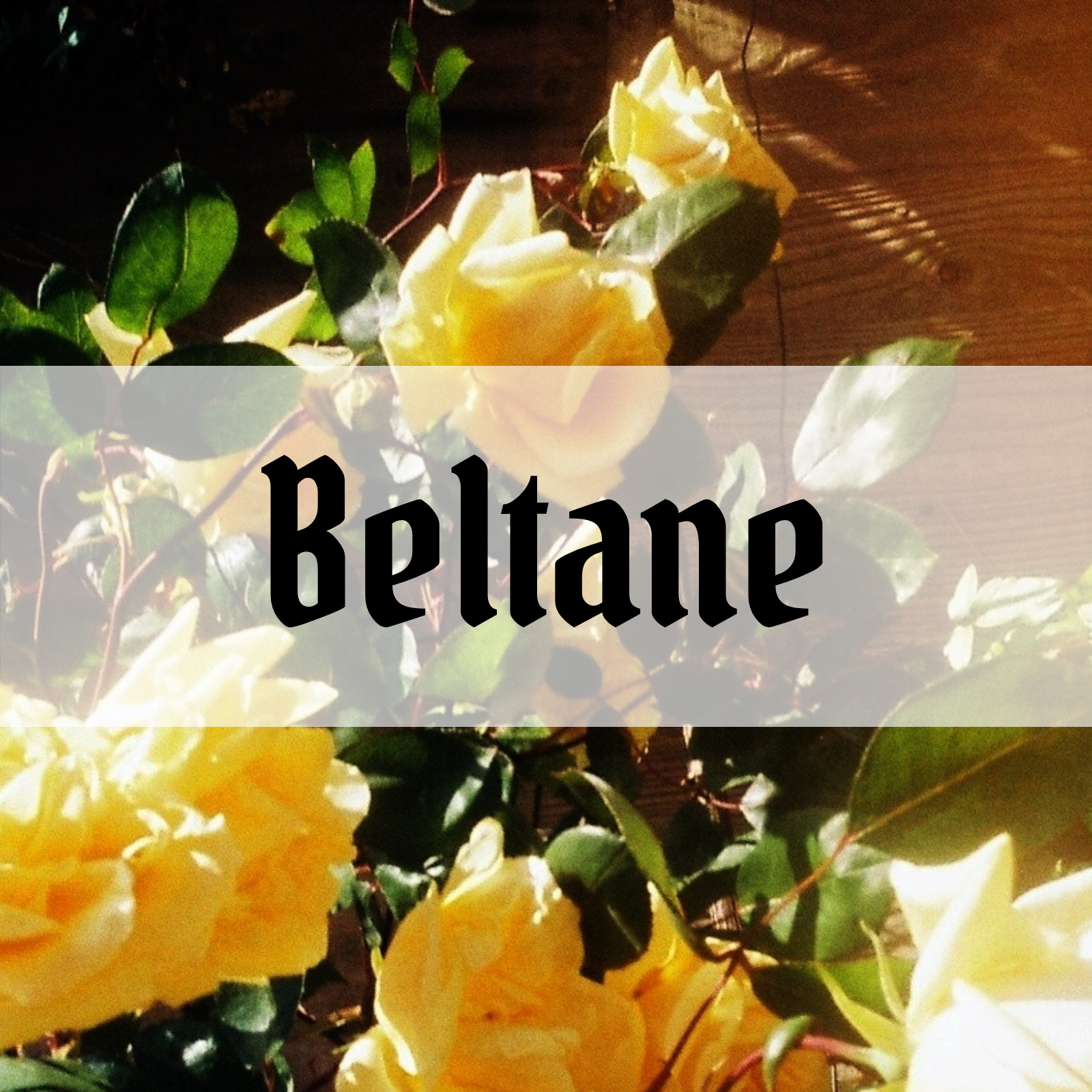 (2021) Beltane celebration – 9 simple activities for beginner witches