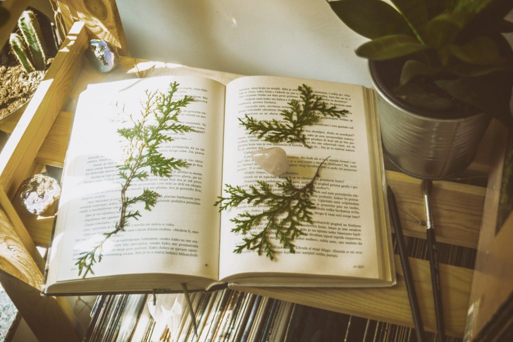 9 books for a green witch
