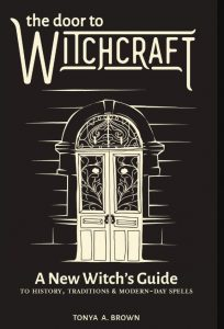 """books for beginner witches : """"The Door to Witchcraft: A New Witch's Guide to History, Traditions, and Modern-Day Spells"""""""