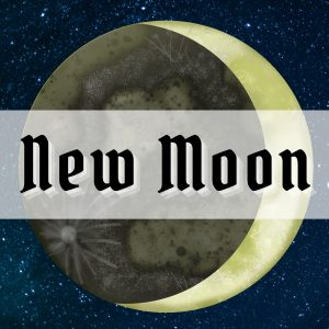 New Moon Rituals and Spells for Beginner Witches