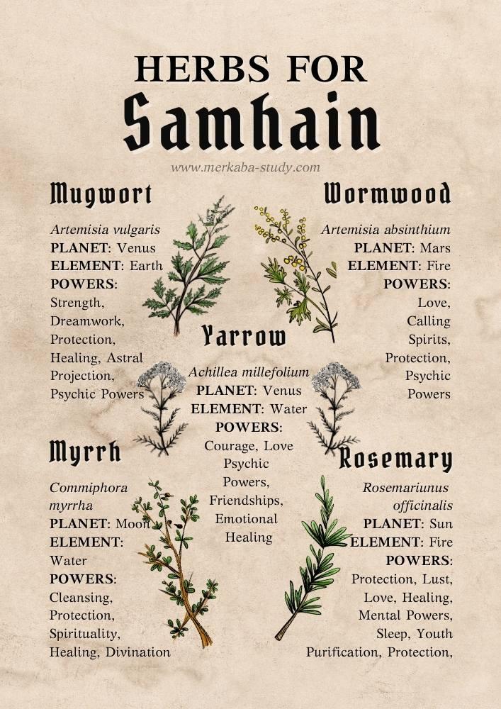 samhain herbs book of shadows printables merkaba study