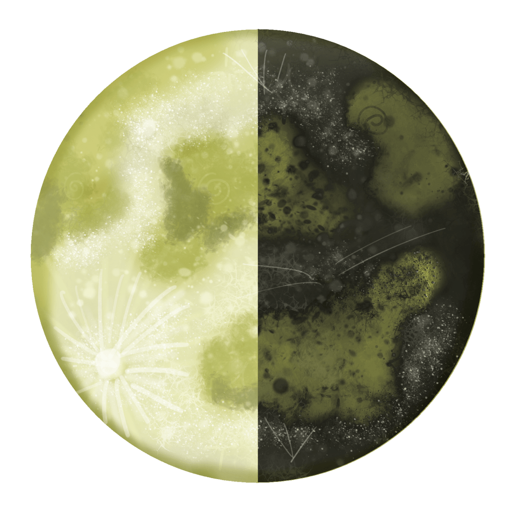 Third Quarter Magic Merkaba Study