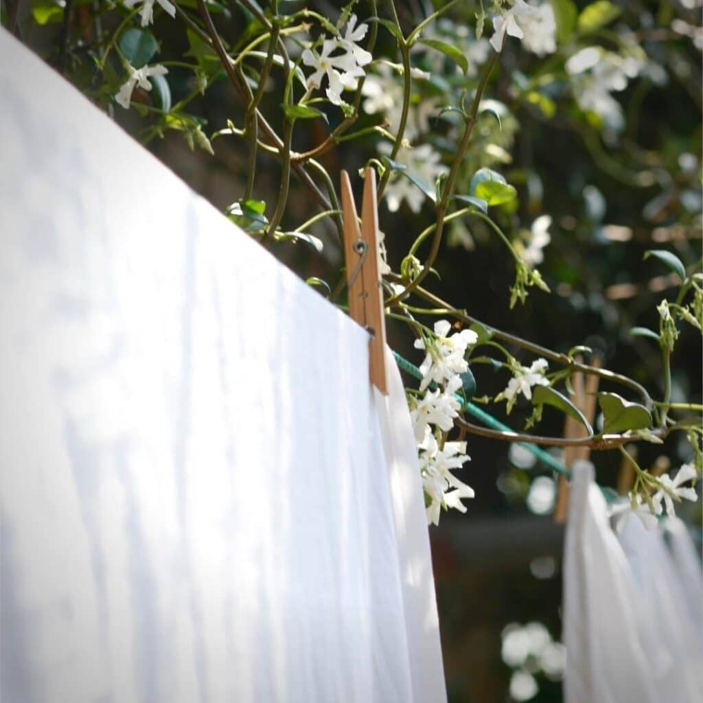 photo of laundry drying in the sun