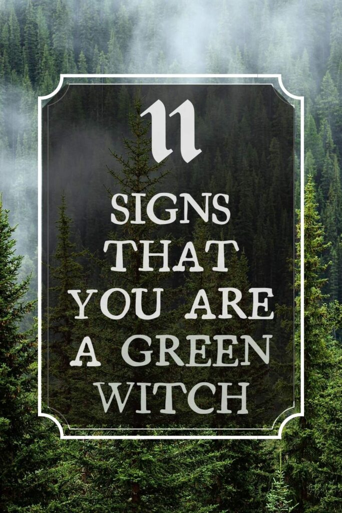 11 signs that you are a green witch types of witches series