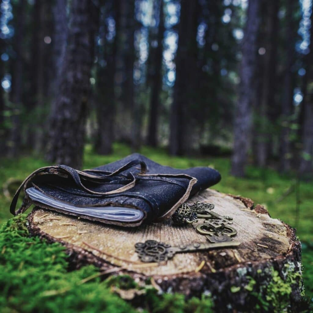 photo of a leather journal in the forest
