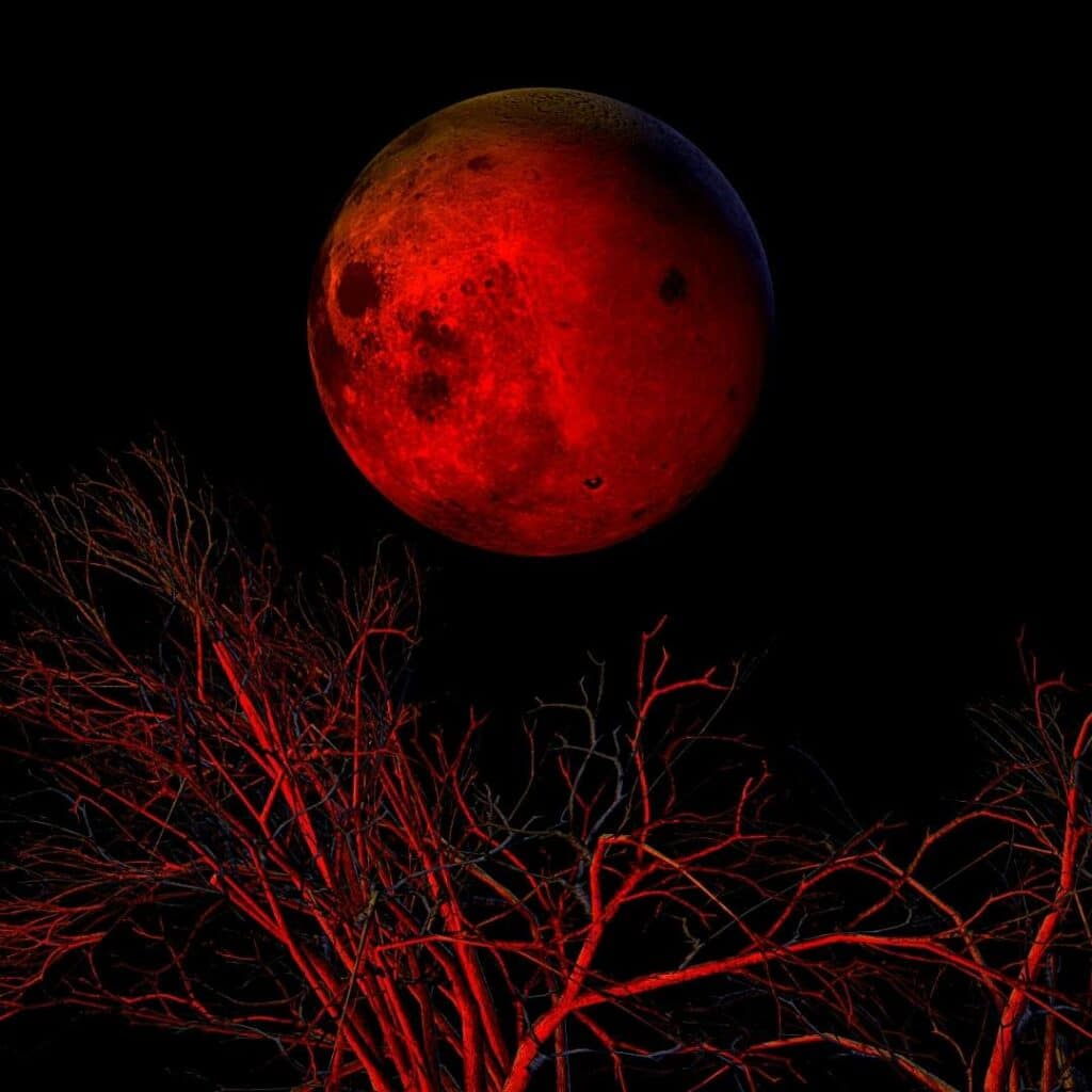 Photography of Blood Moon