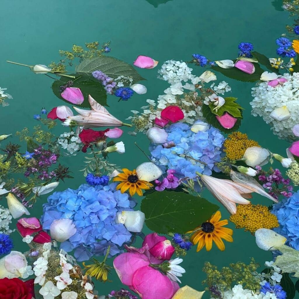 photo of celebrating summer solstice rituals for litha and midsummer with floral bath